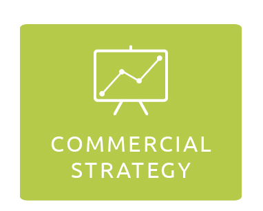 Commercial Strategy
