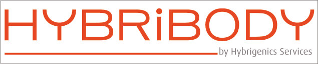logo_hybribody